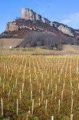 La Roche de Solutré with vineyards Burgundy France