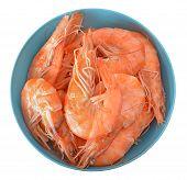 Boiled Tiger Shrimps