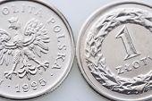 image of zloty  - Polish money  - JPG