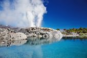stock photo of thermal  - Pohutu Geyser - JPG