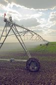 pic of sprinkler  - Automated Farming Irrigation Sprinklers System in Operation on Cultivated Agricultural Field - JPG