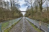 image of cobblestone  - Image of the famous cobblestone road from the forest of Arenberg  - JPG