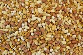 picture of mixed nut  - mixed nuts on market textures close up - JPG