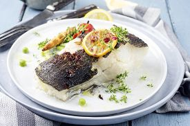 stock photo of halibut  - grilled halibut - JPG
