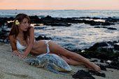 Woman In Bikini With Sea Turtle