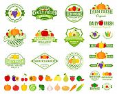 ������, ������: Fruits And Vegetables Labels Fruits And Vegetables Icons And Design Elements