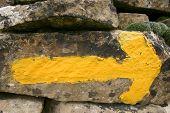 Yellow Arrow 4