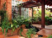 stock photo of pergola  - a beauftiful malaysian home with a pergola embellished with green plants - JPG