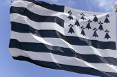Flag Of Brittany, France