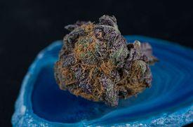 picture of agate  - Close up macro of Indica Strain Grandaddy Purple medicinal marijuana on blue agate - JPG