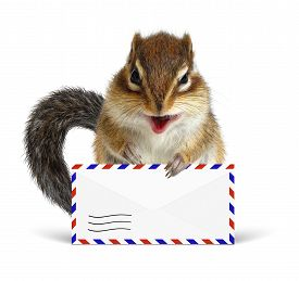 image of chipmunks  - Funny postman chipmunk with air mail letter on white - JPG