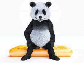 foto of panda bear  - focused character panda sits with his back flat on orange translucent inflatable mattress - JPG