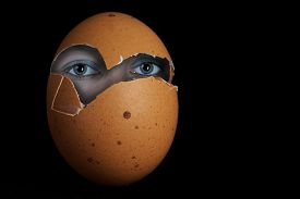 picture of human egg  - The image shows a photo composition of an egg with human eyes - JPG