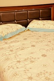 picture of pillowcase  - Comfortable and stylish looking for luxury pillows and bed - JPG