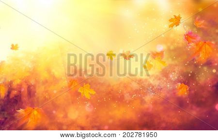 poster of Autumn background. Fall Abstract autumnal background with colorful leaves and sun flares, flying on