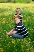 Father And Sun On Field Of Dandelions