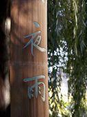 Chinese Serenity