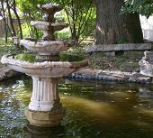 The Fountain In The Pond
