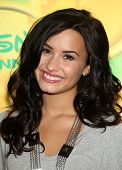 LOS ANGELES - MAY 15:  Demi Lovato arrives to Disney|ABC Television Group Summer Press Junket on May