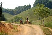 Trail_Ride
