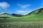 Tierra del Fuego Nationalpark, Argentinien
