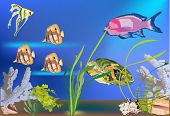 illustration with tropical fishes in sea