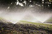 Automated Water Sprinklers
