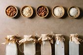 Variety Of Non-dairy Vegan Lactose Free Nuts And Grain Milk Almond, Hazelnut, Coconut, Rice, Oat In  poster