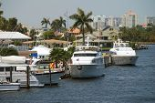 Tropical Marina And Yachts