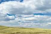 Hilly Steppe. Curvy Hills. Blue Sky With Clouds And Grass. Beautiful Plain. Natural Landscapes. Lowl poster