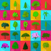 Tree Types Icons Set. Flat Illustration Of 25 Tree Types Icons For Web poster