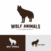 Wolf Abstract Logo Design Vector Illustration. Wolf Logo Template. Simple Flat Style. Icon Symbol. poster