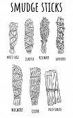 Sage Smudge Sticks Hand-drawn Set Of Sketch Doodles. Herb Bundles poster