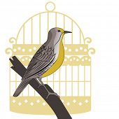 stock photo of meadowlark  - Meadowlark bird on perch with vintage stylized  birdcage - JPG