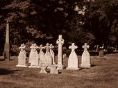 Cemetery In Brooklyn - Crosses - Sepia