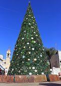 Постер, плакат: Рождественская елка в Назарет Израиль