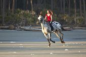picture of appaloosa  - woman riding horse bareback on the beach - JPG