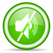 mute green glossy icon on white background