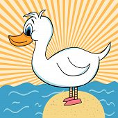 Duck Out Of Water Cartoon Character
