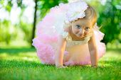 Cute Little Girl In Tutu At Park