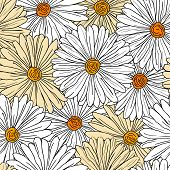 Camomiles seamless background
