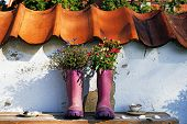 Purple Rubber Boots With Flowers