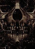 Skull Poster Background
