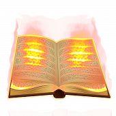 Old Book Burning