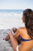 Sexy tanned woman in bikini sitting on the beach