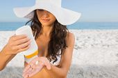 picture of sun tan lotion  - Sexy young brunette on the beach taking care of her body putting on sun cream - JPG