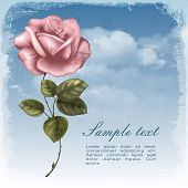 Vintage greeting cards with rose and sky.