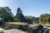 Old Ruins Of The Temple At Tikal, Guatemala