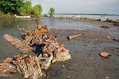 Abandoned Rusty Metal Boat Parts At Low Tide Ocean Coast
