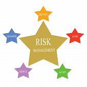 Risk Management Word Stars Concept